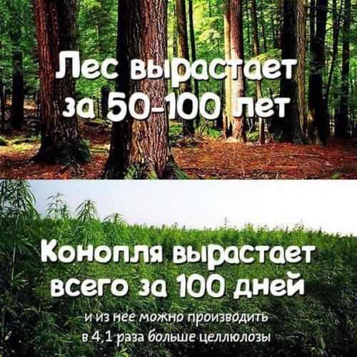 1451732238111695223.jpg