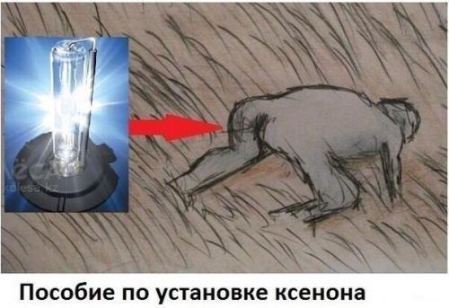 foto (1).jpg